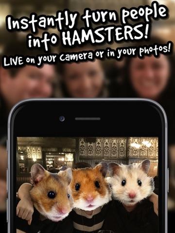 Live hamster cam remarkable, rather