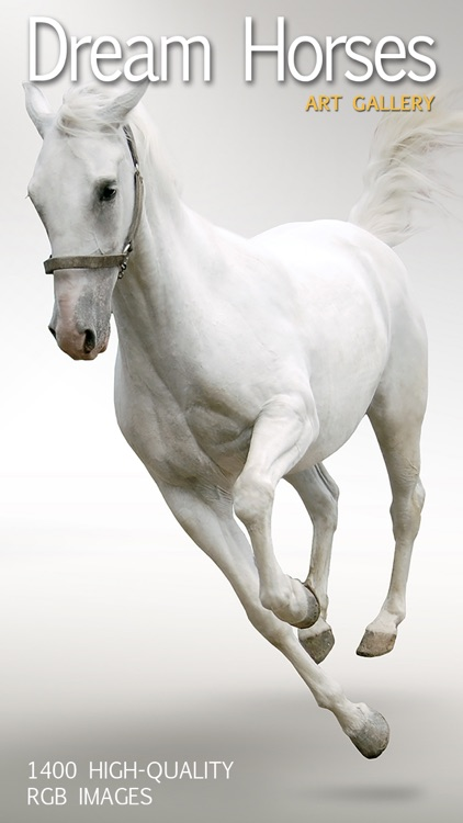 Dream Horses - Art Gallery: Breeds & Types, Racetrack & Tournaments, Photos & Paintings screenshot-0