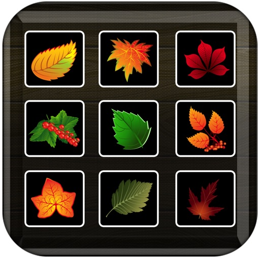 Leaves Collector - Switch and Swap Matching Plants
