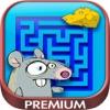 迷宫 - 逻辑儿童游戏 - 高级