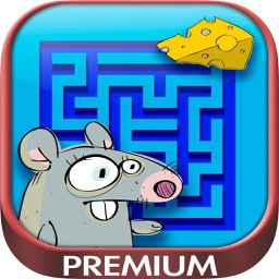 Mazes – logic games for children - Premium