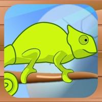 Codes for Chameleon Care Hack
