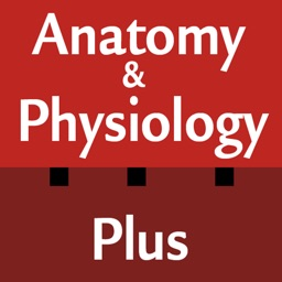 Anatomy & Physiology Plus Flash Cards