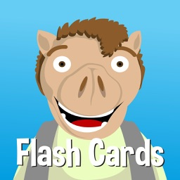 Vowel Stories for Beginning Readers: Flash Cards | Learn sight words, blends, and word families for kindergarten and first grade kids