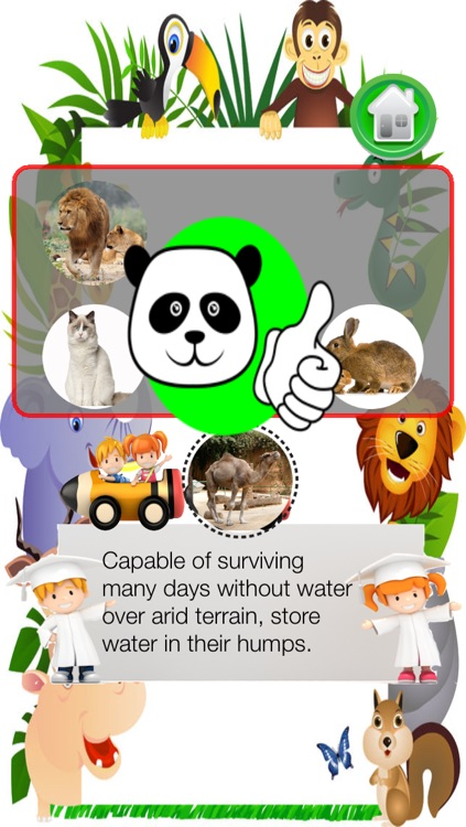 Guess the Animals For Kids Free screenshot-4