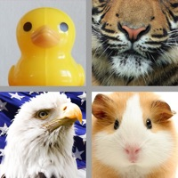 Codes for 4 Pics 1 Animal Free - Guess the Animal from the Pictures Hack