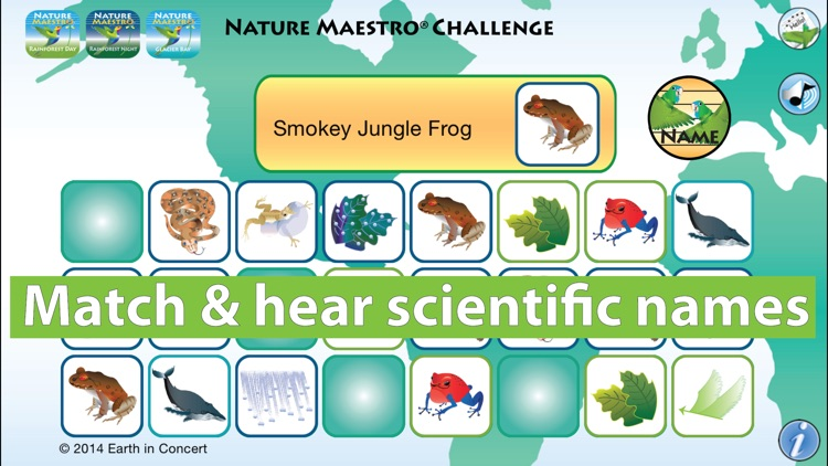 Nature Maestro Challenge screenshot-3