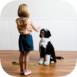 Best Dog & Puppy Training Made Easy Guide & Tips for Beginners