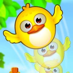 Pretty Bird: A Flying Prey Matching Game