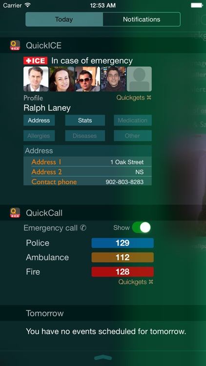 Quickgets ICE - In Case of Emergency info & call widgets and app screenshot-0