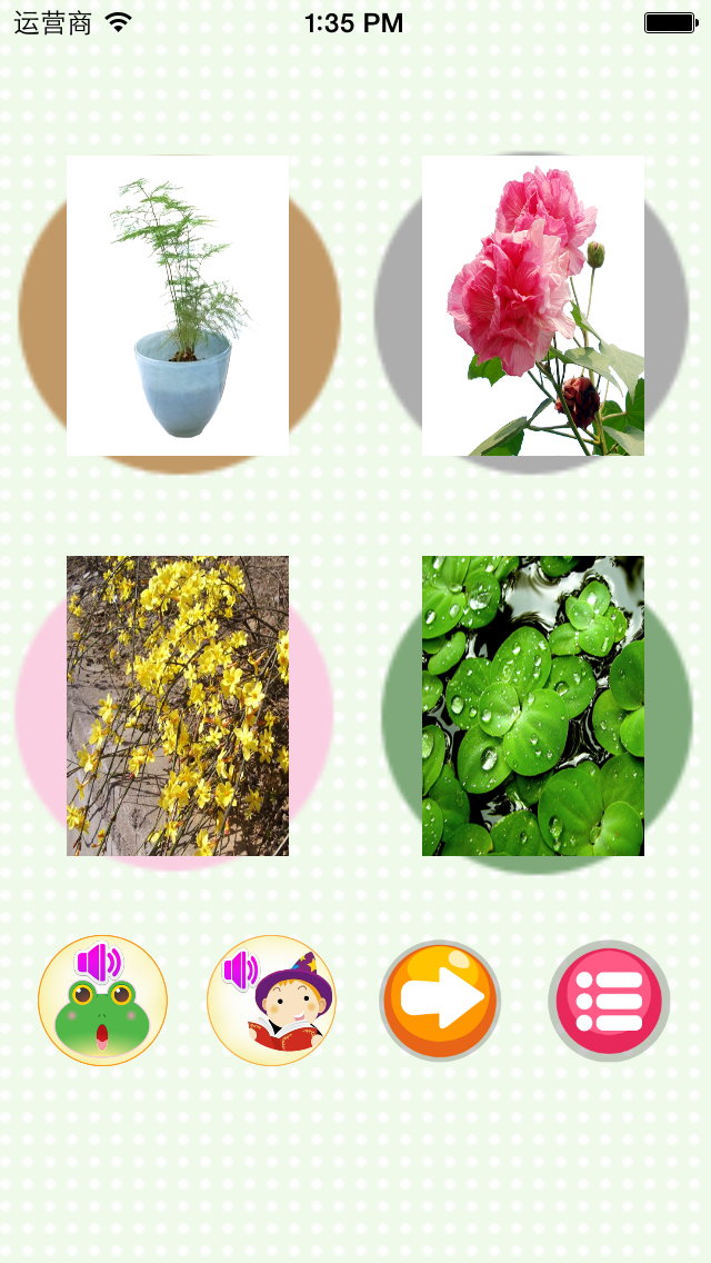 Learn plant-English words game screenshot three