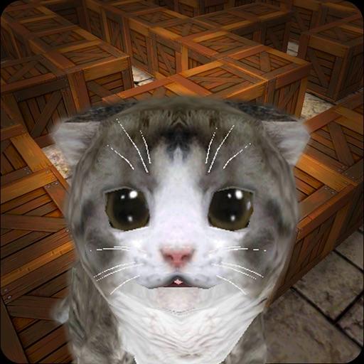 Cu Cat Maze Runner Icon