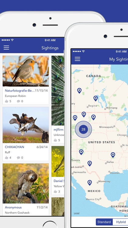 iKnow Birds 2 PRO - The Field Guide to the Birds of North America screenshot-4