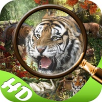 Codes for Mystery in Jungle Hidden Objects edition Hack