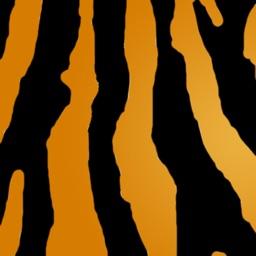 Tuneful Tiger