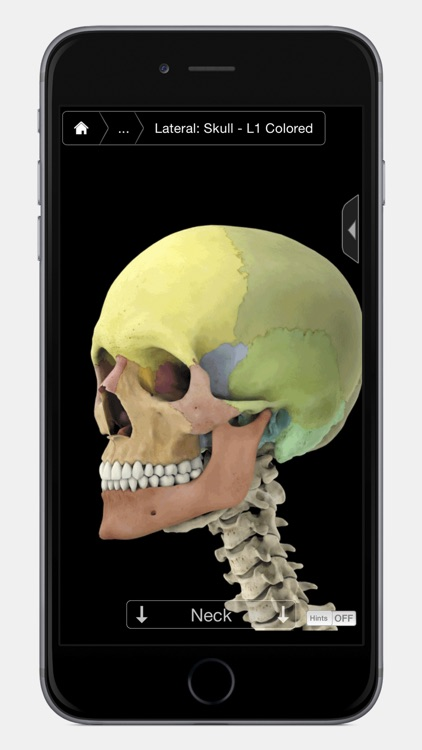 Skeleton System Pro III - iPhone Edition