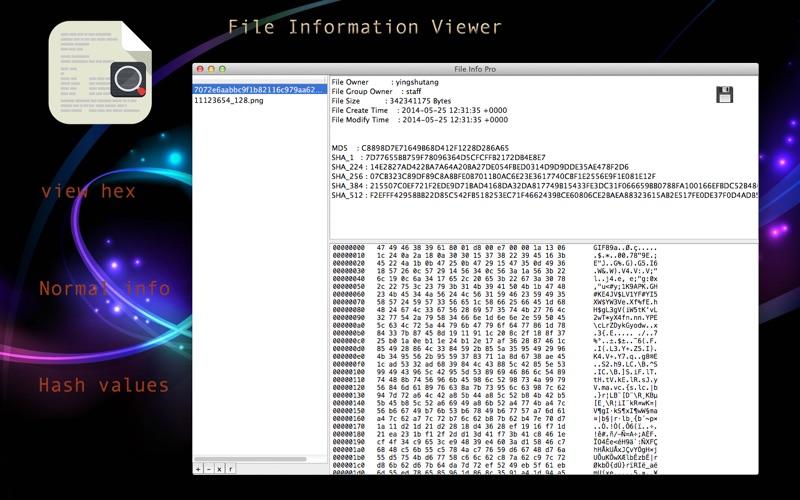 File Information Viewer скриншот программы 1