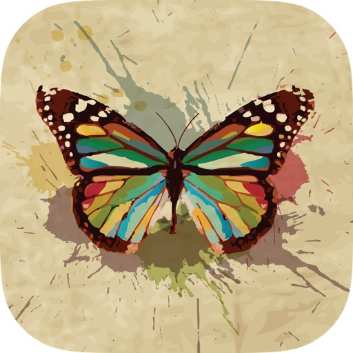 Butterfly Wallpapers Backgrounds Themes Download Free Hd
