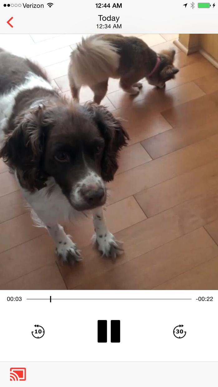 AllCast — Cast photos, music, and video to your Chromecast Screenshot