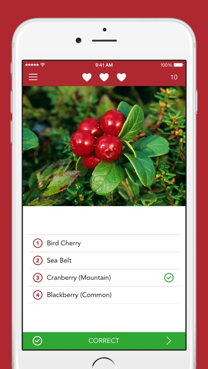 Wild Berries and Herbs 2 PRO - The Field Guide by NATURE MOBILE screenshot-3