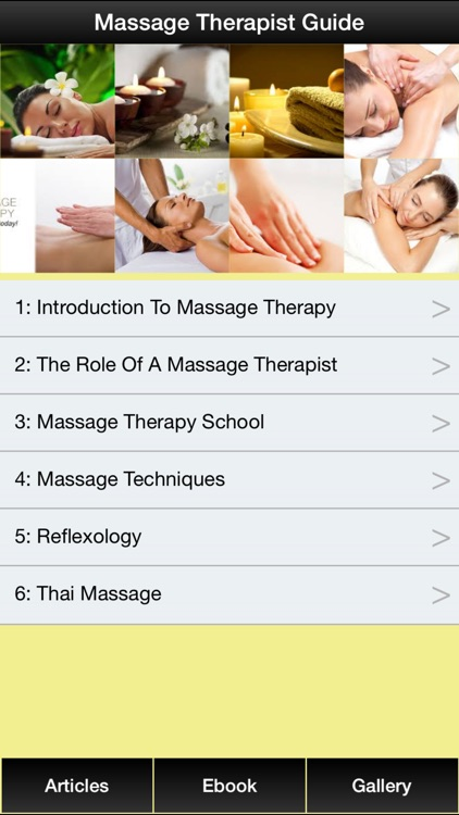Massage Therapist Guide