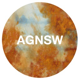 Indigenous Australian: Art Gallery of New South Wales
