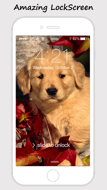 Cute Dogs and Puppy Wallpapers screenshot-4