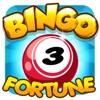 Bingo fortune