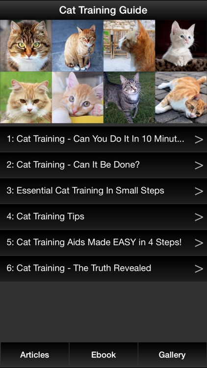 Cat Training Guide - Discover Best Techniques To Train Your Cat !
