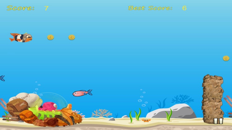 A Fish in the Sea: An Underwater Splashing Adventure
