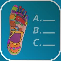 Reflexology Quiz - zones