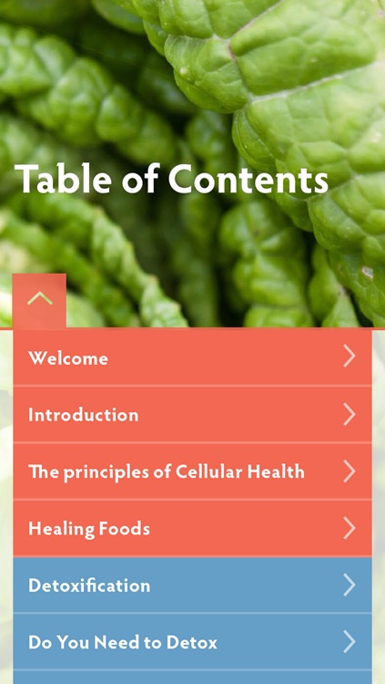 Food Matters 3 Day Detox screenshot-1