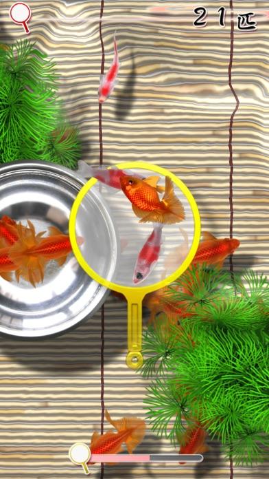 桜金魚すくい screenshot1