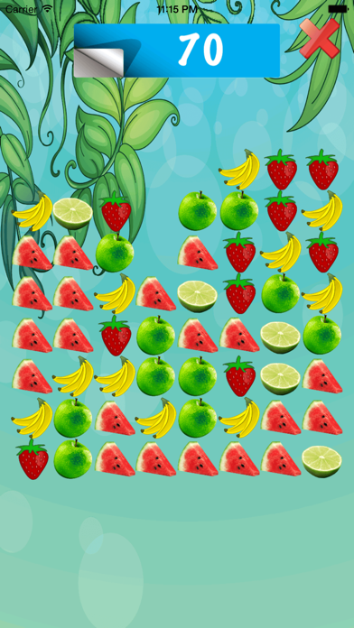 Fruit Match Galore - The Fruit Matching Puzzle