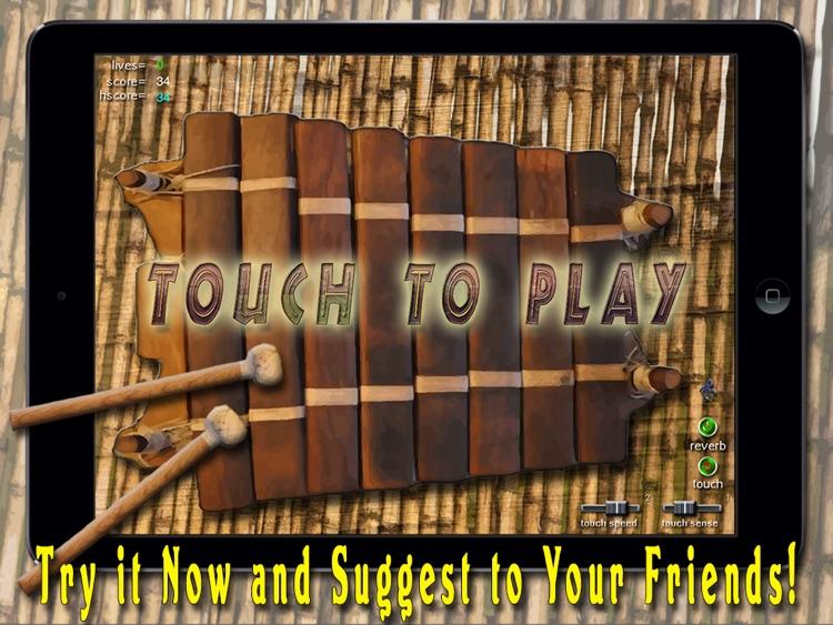 African Balafon Fun! - HD PRO screenshot-3
