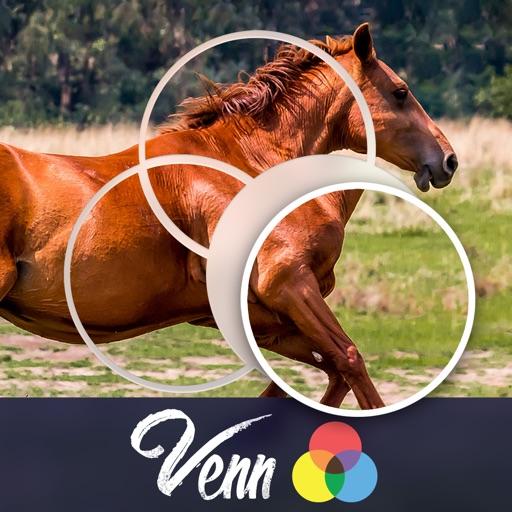 Venn Horses: Overlapping Jigsaw Puzzles