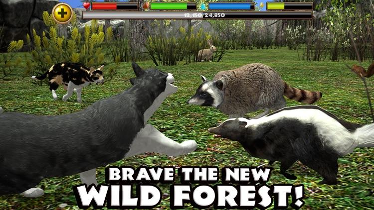 Stray Cat Simulator screenshot-3