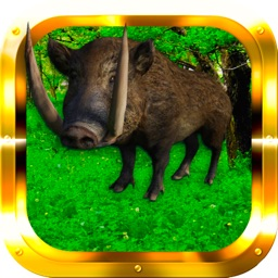 Boar Hunter Gold