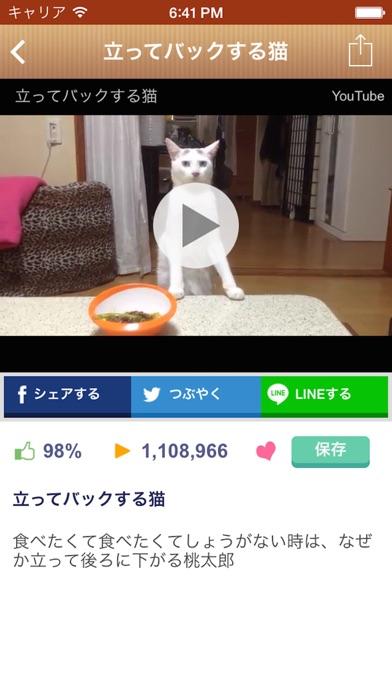 日刊ねこ新聞 - 猫ブログ&ネコ動画アプリスクリーンショット5