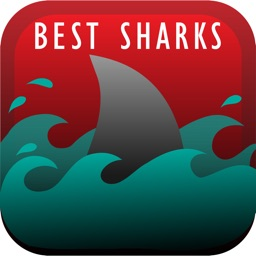 The Best Sharks
