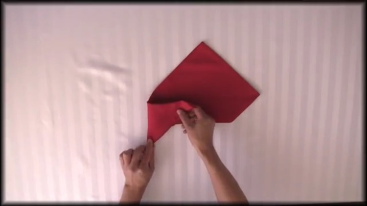 How To Fold Napkins screenshot-3