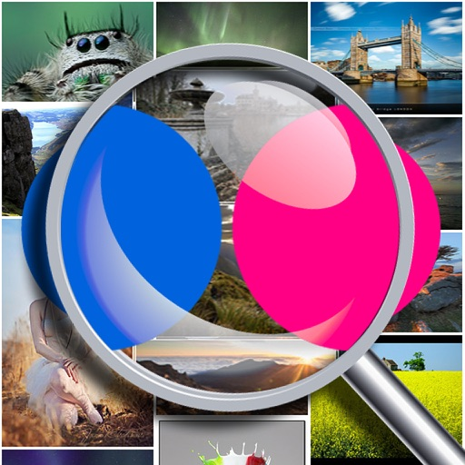 Photo Search for Flickr Free