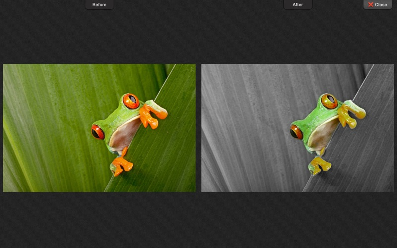 Screenshot #3 for ColorStrokes