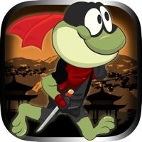Codes for Frog Hero Jump Deluxe: Avoid the Fighting Ninjas Hack