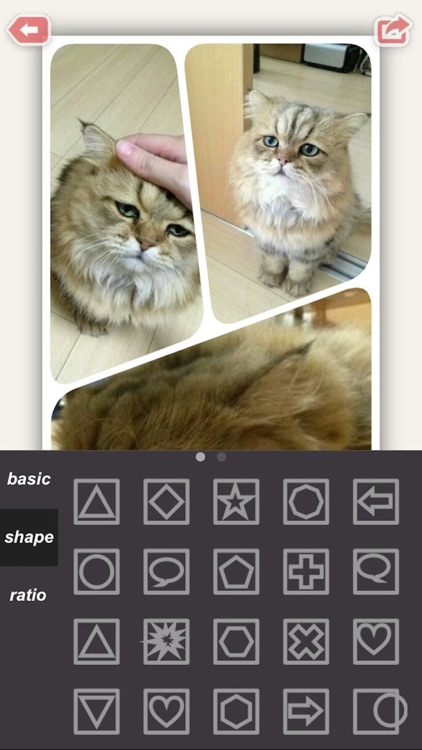 Lens Collage Pro : Clone Photo Video Editor - Fun Movie Maker for Facebook, Instagram