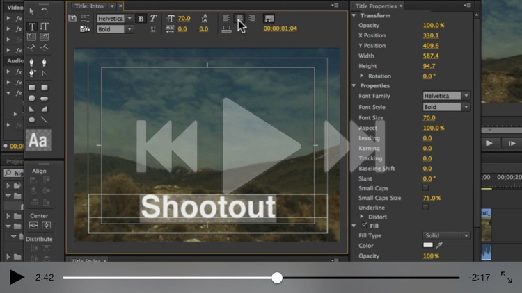 Intro Course For Premiere Pro screenshot-4
