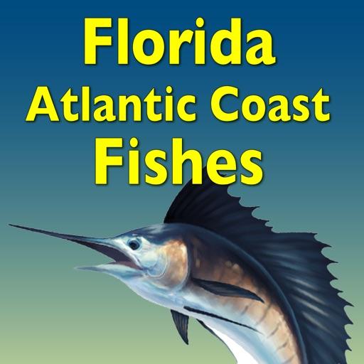 Guide to Florida Atlantic Coast Fishes