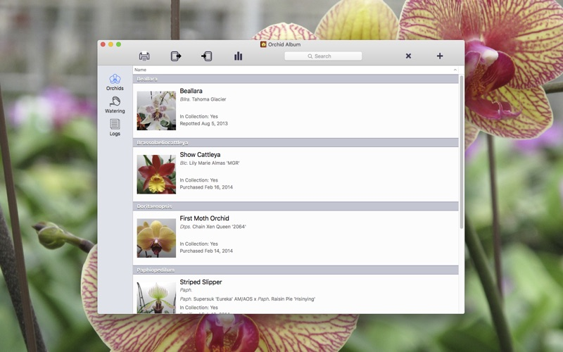 Orchid Album for Mac