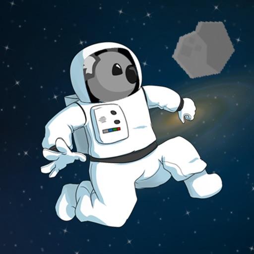 Koala in Space