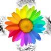 カラフル: 大人のための塗り絵本 - iPhoneアプリ